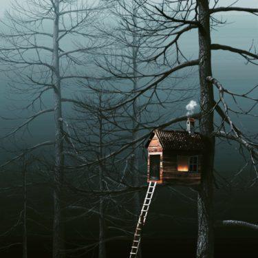 究極の自然素材の家【ツリーハウス】海外のアイデア